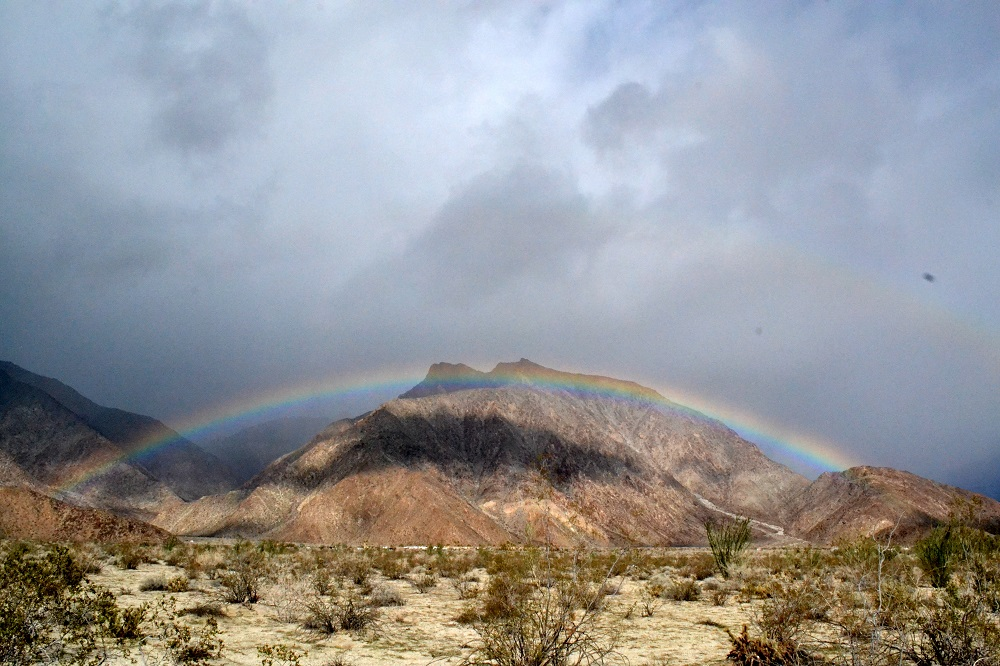 Borrego Rainbow